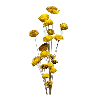 20 Stem Ting Mixed Flower Branches – Sunkist