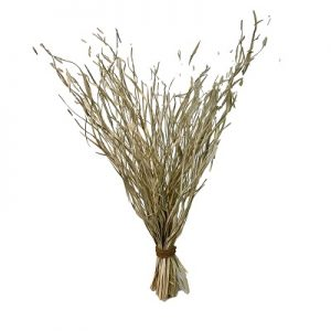 250gm Palm Magdalena Bleached Bunch 32-34 inch